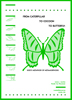 From Caterpillar to Cocoon to Butterfly (e-Book)